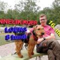 """Loeng """"Õnnelik koer"""" 16.05.2020"""
